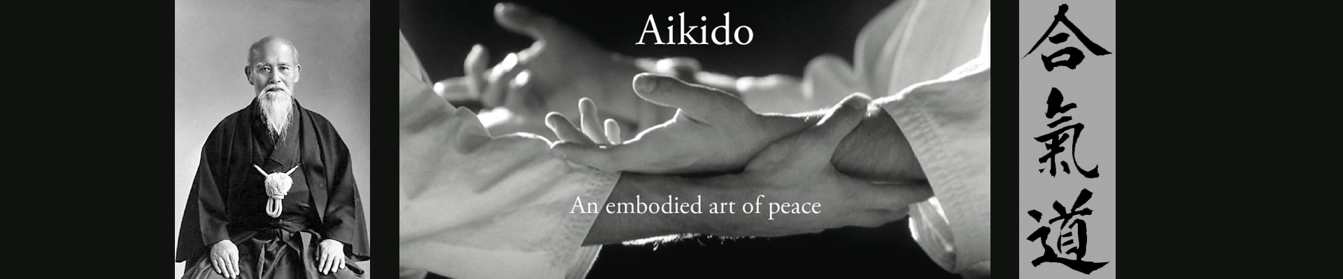new aikido banner